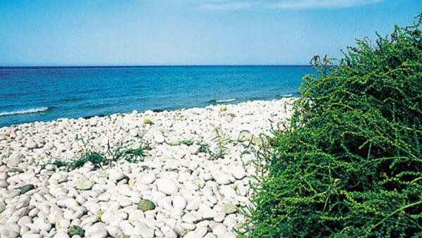 Spiaggia Menfi Giache Bianche 01