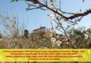 Riapertura siti archeologici di Agrigento: Valle dei Templi